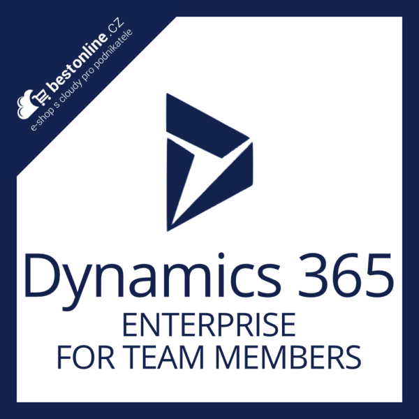 Dynamics 365 enterprise for team members