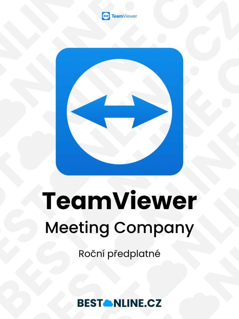 TeamViewer Meeting Company